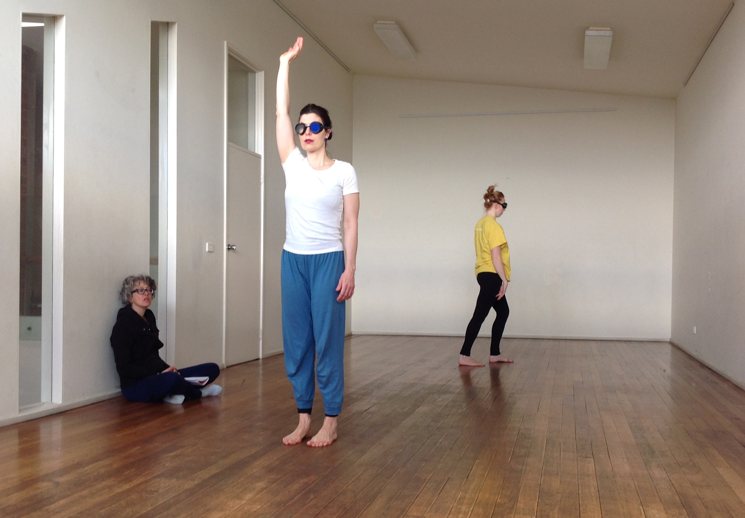 Within studio research, the available sensorial feedback is altered with the use of goggles that simulate various limits in visual information. The dancers work with different types and degrees of occlusion, improvising and repeating known and learnt dance material. Alterations in effort within these variations are observed, as well as the perception of relative space in relationship to memory.